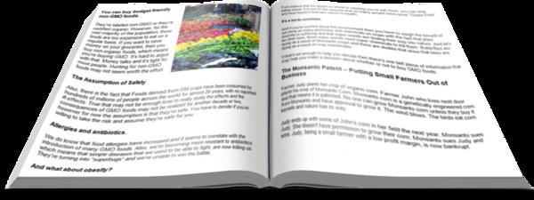GMO PLR Report