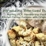 Bite-Sized Bundles Monthly PLR Membership